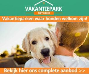 vakantiepark met hond banner