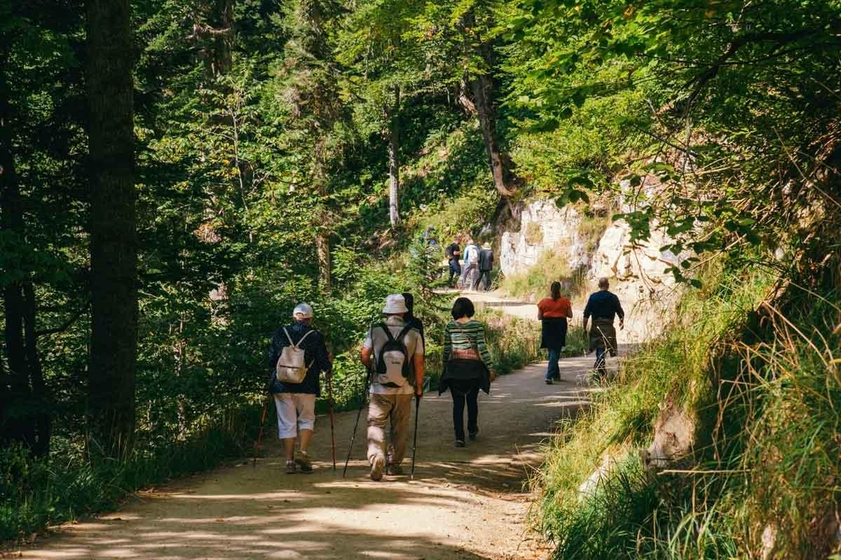 wandelen in de natuur
